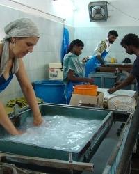 Handgeschöpft Südindien